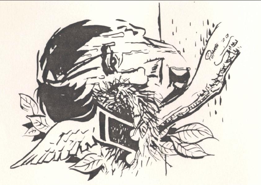 Desenho de Jorge Palheta