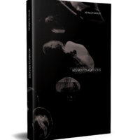 Movimentos Portáteis – Reynaldo Damazio